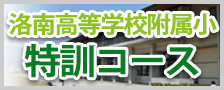 洛南高等学校附属小学校特訓コース